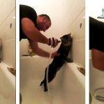 A macskák általában utálják a vizet. Ez a cica azonban megőrül érte: