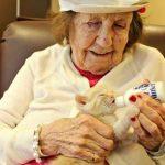 Az idősotthon magányos lakói kiscicákat kaptak, most mintha kicserélték volna őket: roppant tanulságos képek