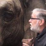15 év után újra találkoztak: az elefánt azonnal felismerte gondozóját: videón a megható pillanat