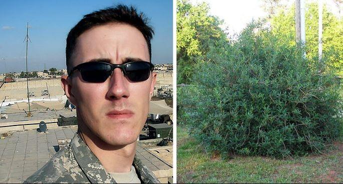 A katonának elege van az életéből, utolsó cigarettájára készül: ekkor a bokrok közül furcsa hang üti meg a fülét