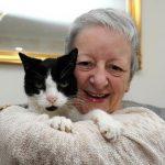A cica folyton a hölgy vállát ütögette: eleinte elzavarta, pedig kiderült, az életét mentette meg
