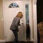 Az ajtó mögött áll a kutya gazdája, akit az eb 2 éve nem látott: páratlan reakcióját videó örökíti meg
