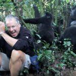 A gorillák körbeveszik a fotóst, de nem azért, amit elsőre gondolnánk