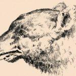 A legtöbben csak egy kutyát látnak, ám azok, akik igazán szemfülesek, észreveszik az embert is: te is ráleltél?