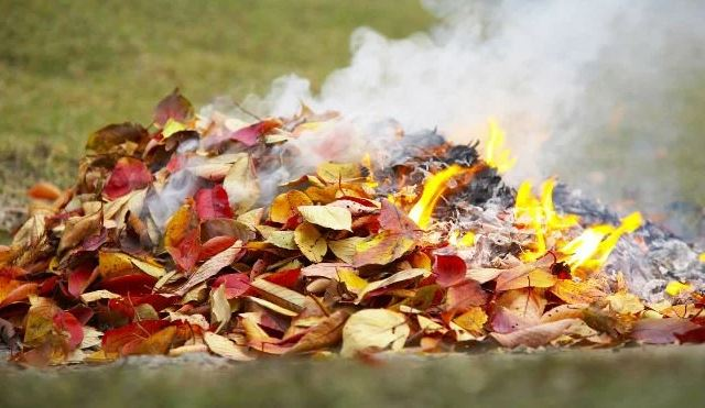 Megvan a dátum: hamarosan végleg betiltják a kertben égetést hazánkban: na de mi a helyzet a grillezéssel?