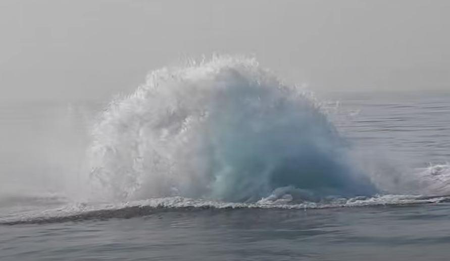 Irgalmatlan örvénylés, fodrozódás és hullámzás után ez a hatalmas, 40 tonnás állat emelkedett ki a vízből: lefilmezték